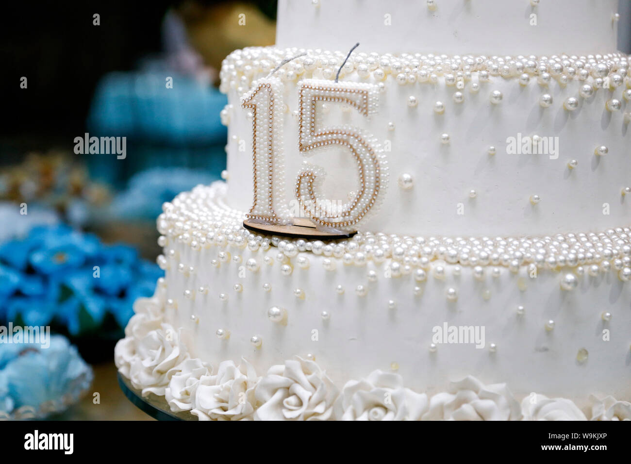 Strange Party Cake 15 Year Old Birthday Cake Fifteen Years Old Festival Funny Birthday Cards Online Fluifree Goldxyz