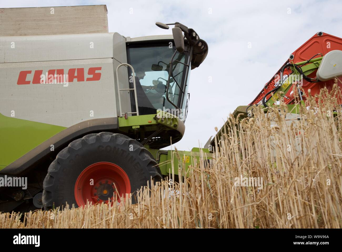 Wheat harvesting: summer 2018, and the crops of Hauts-de-France are 15 days earlier than normal, a flurry of activity ensues to collect the grain Stock Photo