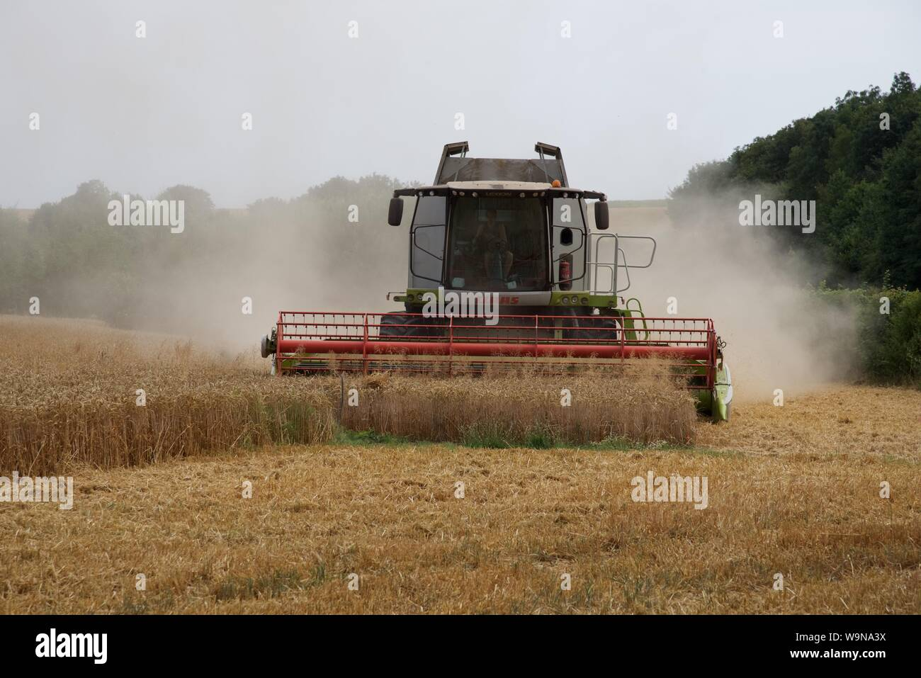 Hauts-de-France/France-July 24 2018: Wheat harvesting - the summer of 2018 and the crops of Hauts-de-France are 15 days earlier than normal Stock Photo