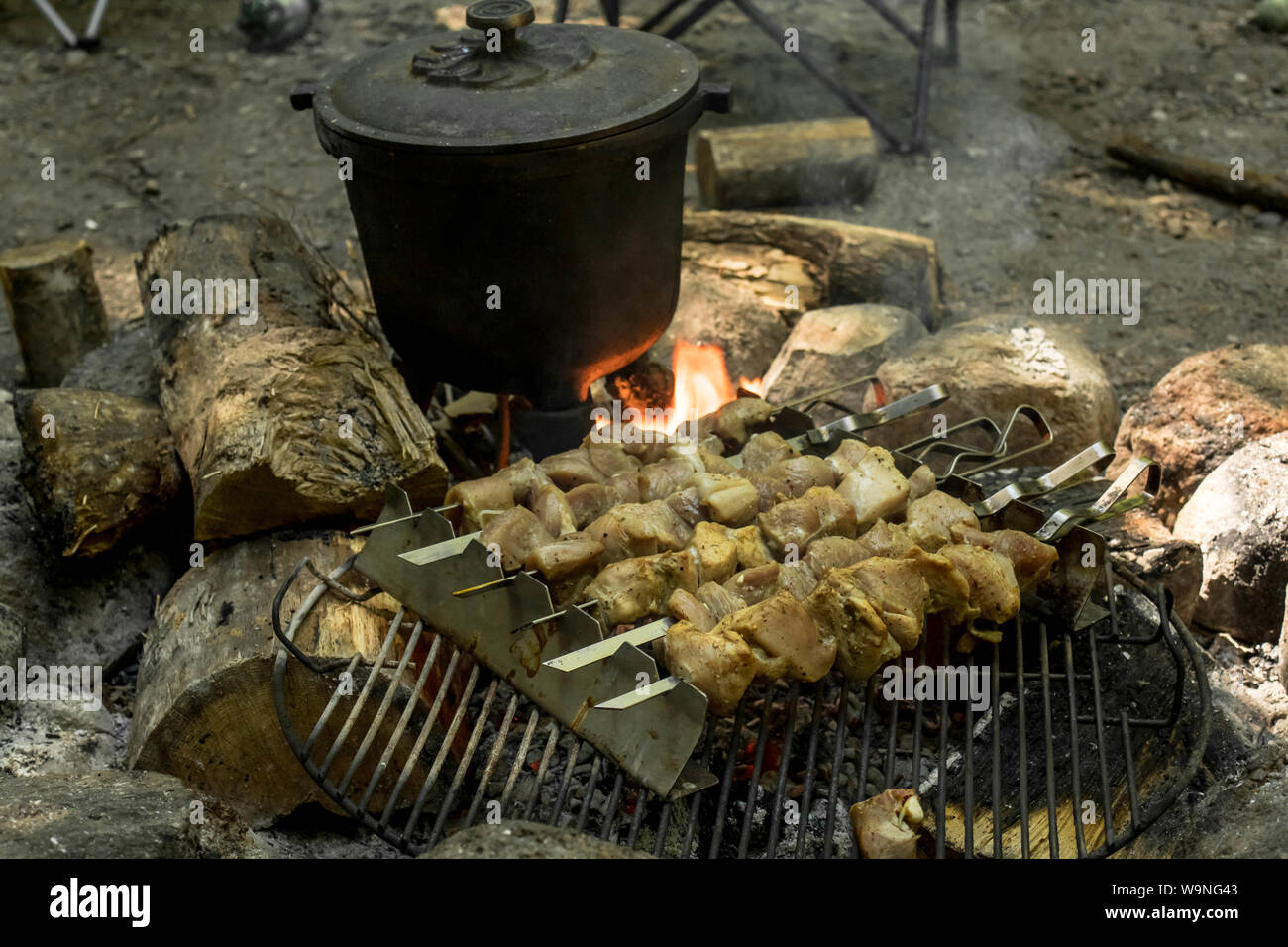 Camping Fireplace Cooking Fish Soup In Cauldron And Shashlik