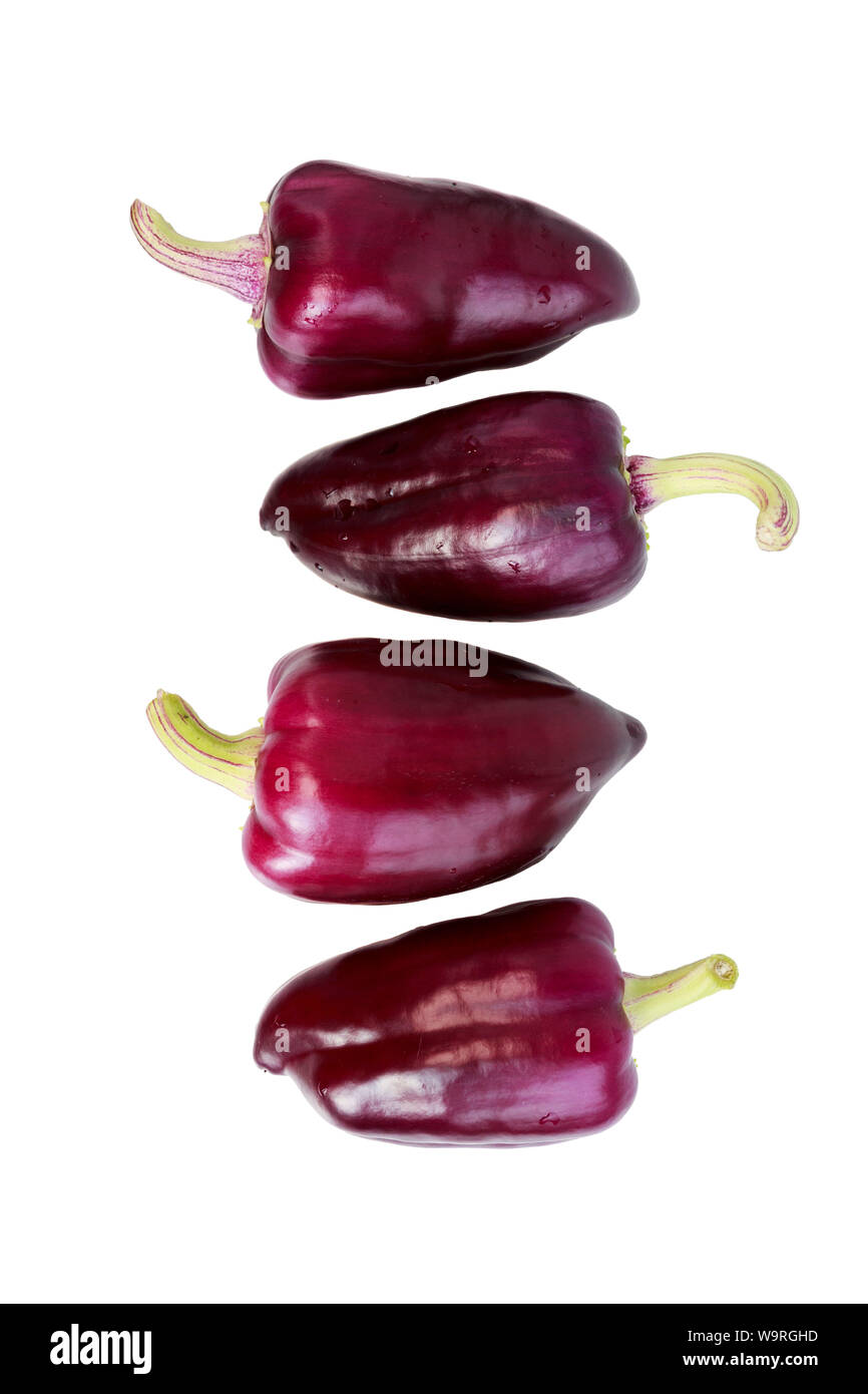 four violet peppers on a white background. isolated. vertical. Stock Photo