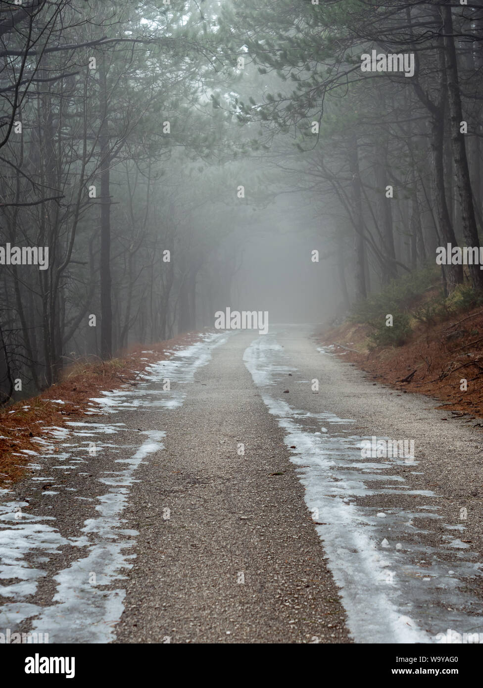Scary Foggy Mountain Road Through Forest Stock Photo