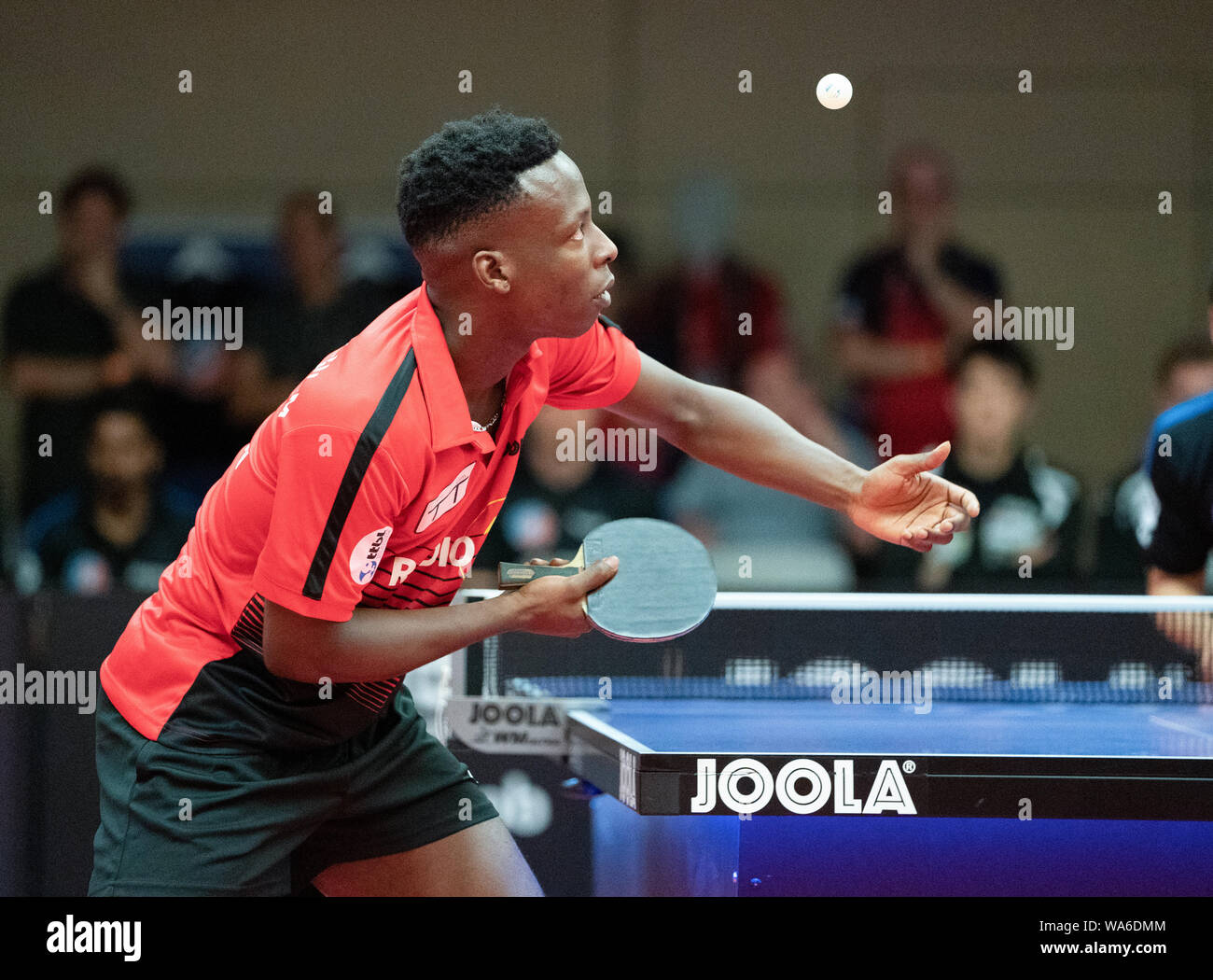 Abdel-Kader Salifou (Ulm) action  GES / Table Tennis / 1st