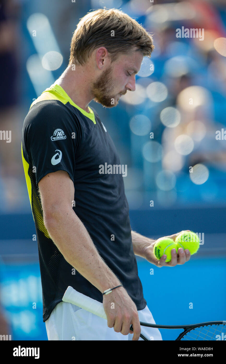 Mason, Ohio, USA. 18th Aug, 2019. David Goffin, (BEL) selects a ball for service during the Men's Final of the Western and Southern Open at the Lindner Family Tennis Center, Mason, Oh. Credit: Scott Stuart/ZUMA Wire/Alamy Live News Stock Photo