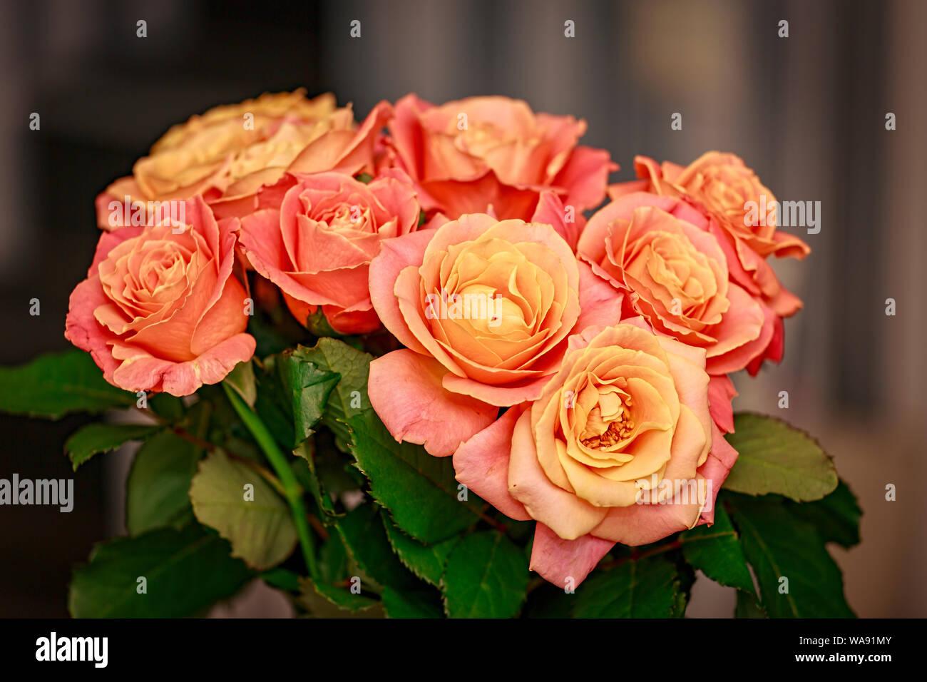 Roses Arrangement Wedding Bouquet Vbouquet Beautiful