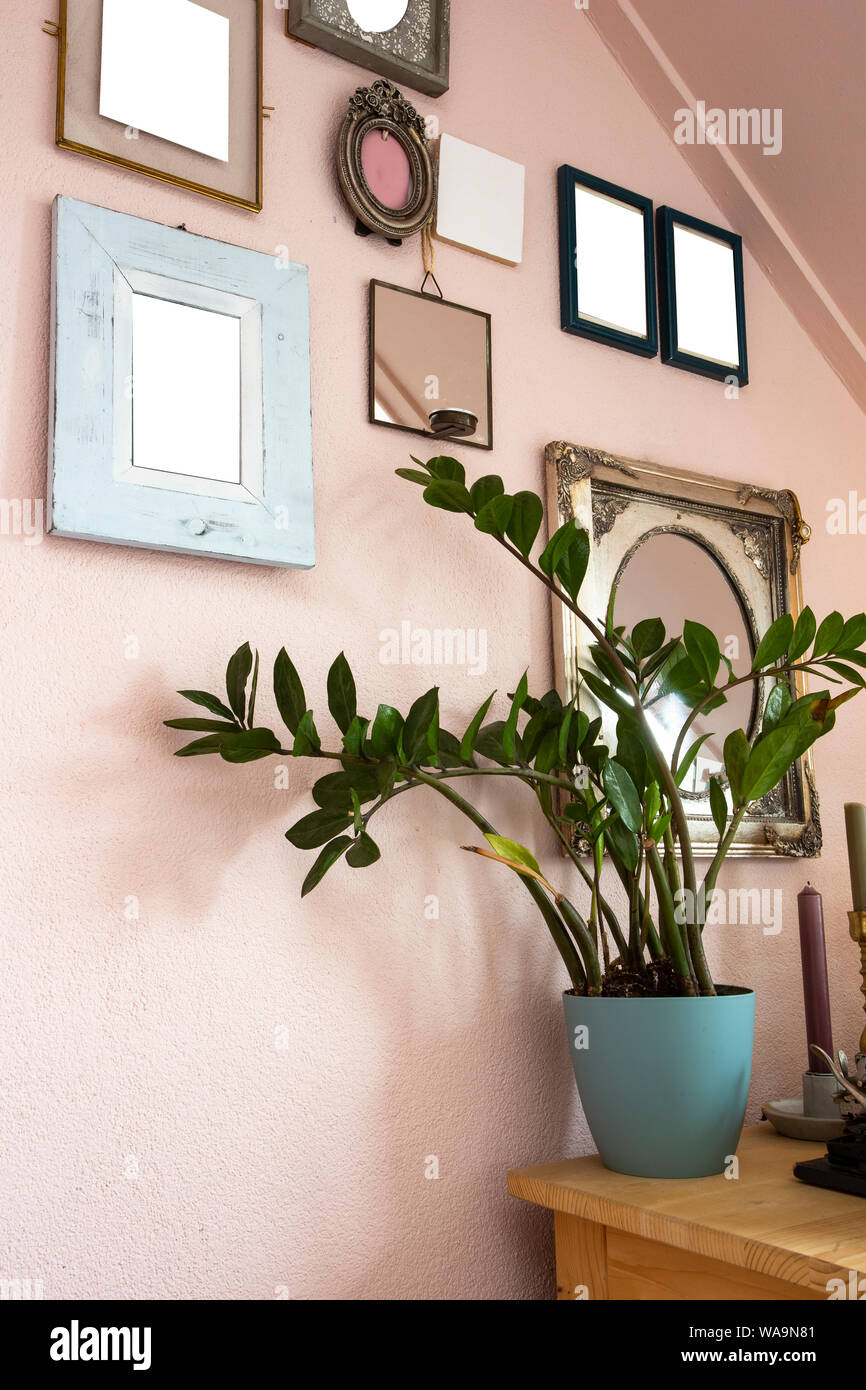 Collection Of Various Blank Black Frames On Wall With Modern Decoration Green Plant In A Lovely Home Retro Design Stock Photo Alamy