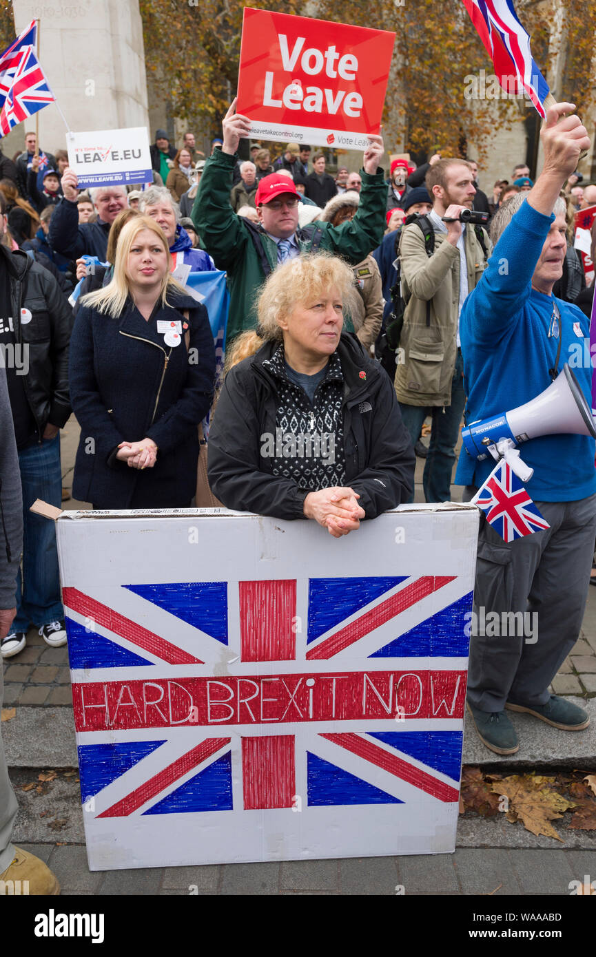 Pro Brexit protest, outside the House of Commons, to mark the 5 months since the UK voted to leave the European Union. London, Britain. Stock Photo