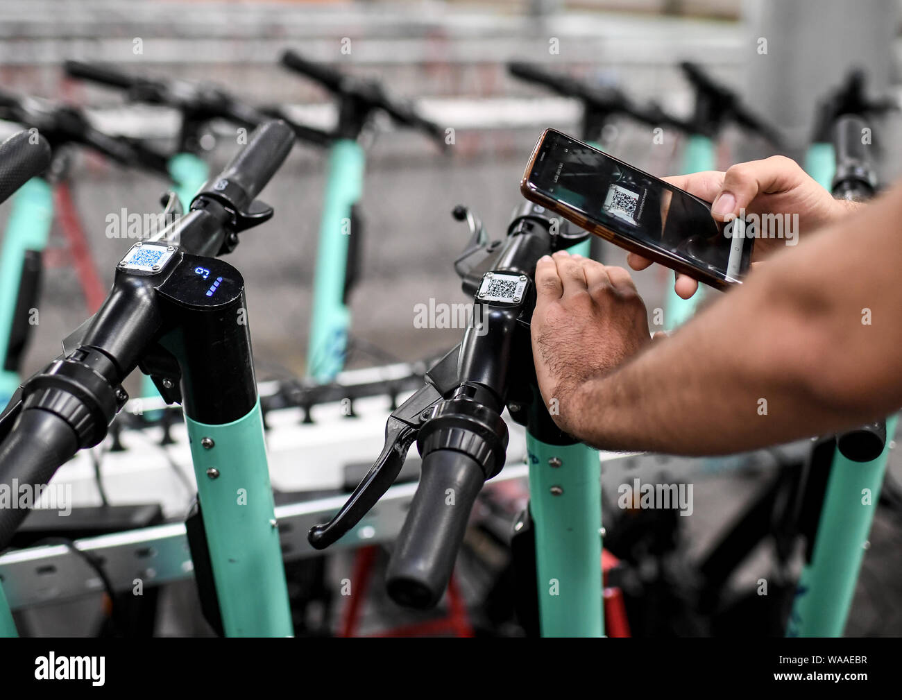 06 August 2019, Berlin: An employee scans the code of an e-tretroller of the provider Tier with his telephone. Photo: Britta Pedersen/dpa-Zentralbild/dpa Stock Photo