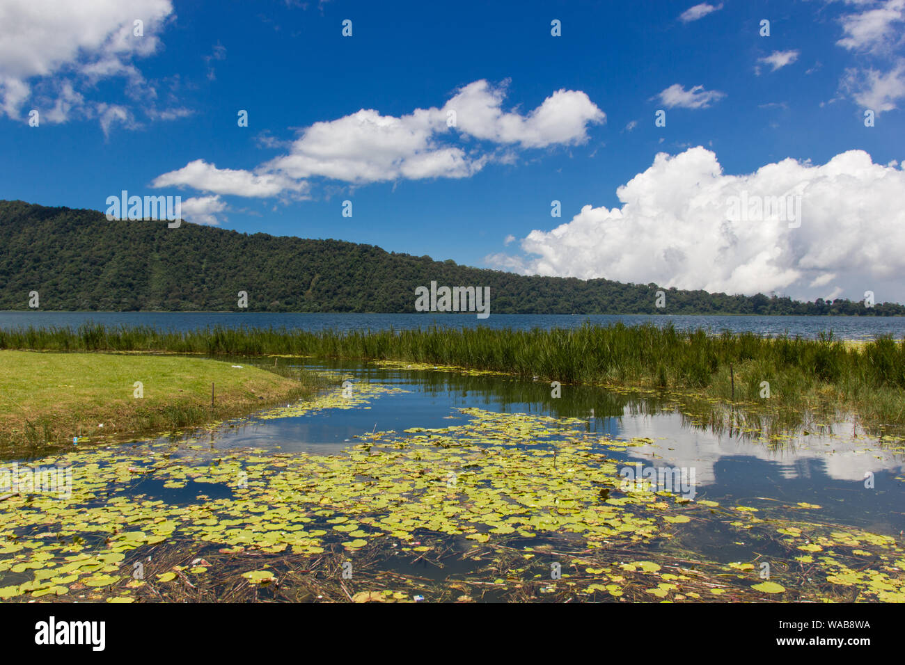 Pura Ulun Danu Bratan lake in Bali. The lake is a popular tourist attraction. Lake with blue sky in the background. Stock Photo