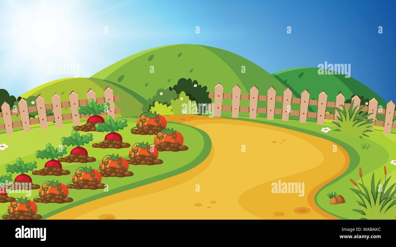 Landscape background design of vegetable garden illustration
