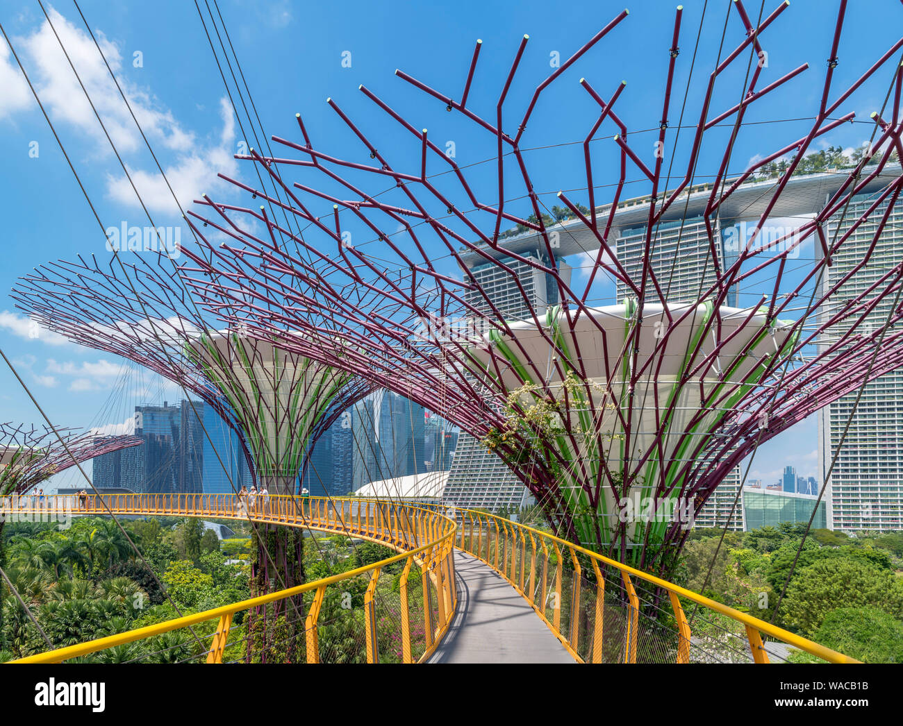 The OCBC Skyway, an aerial walkway in the Supertree Grove, looking towards Marina Bay Sands, Gardens by the Bay, Singapore City, Singapore Stock Photo
