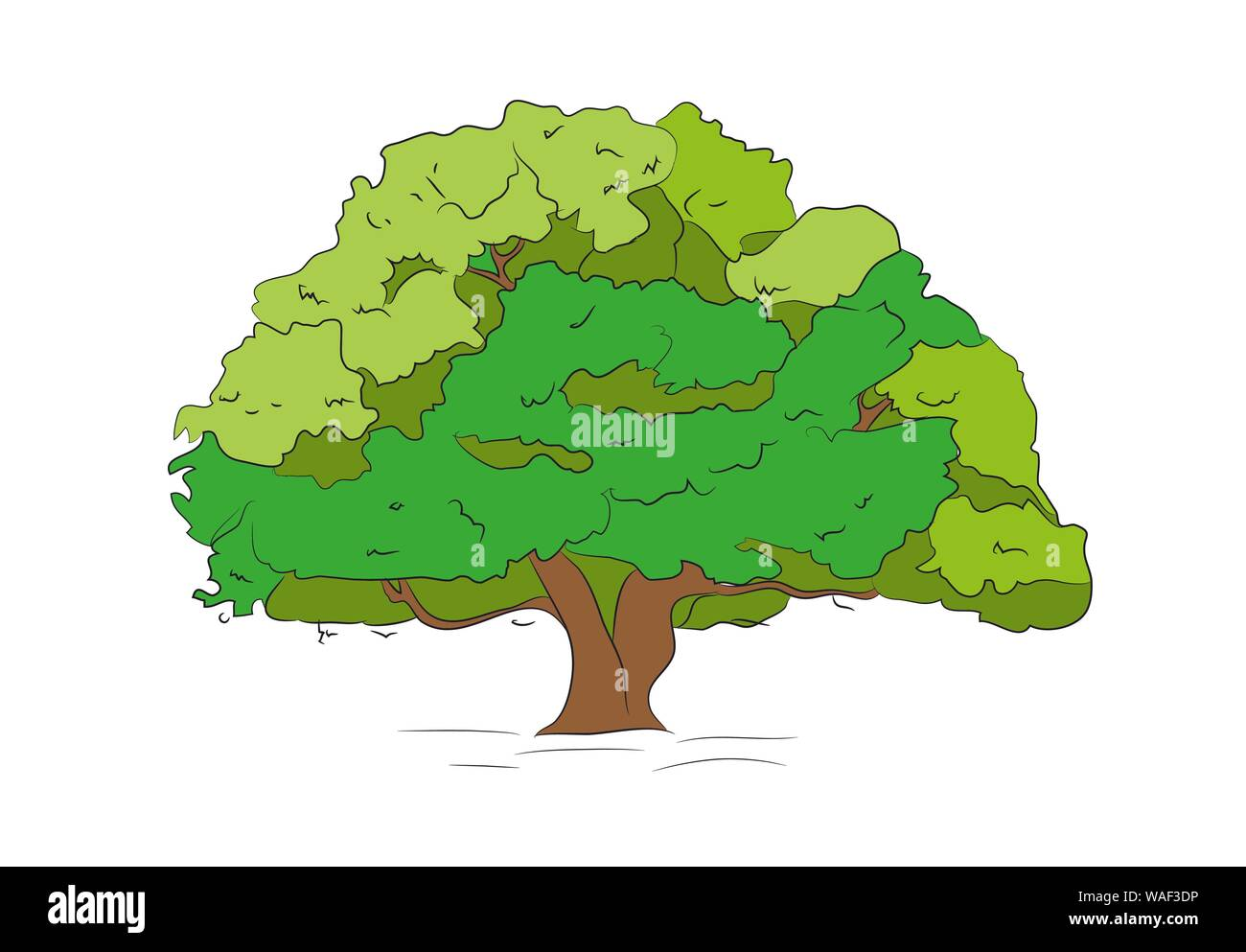 Big Tree Drawing Color Vector White Background Stock Vector Image Art Alamy I didn`t found the tutorial with this technique, so i made it! https www alamy com big tree drawing color vector white background image264634098 html