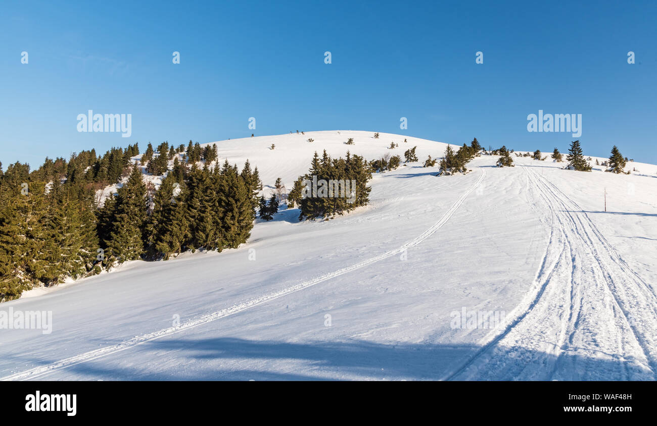 Veterne hill on Martinske hole in Lucanska Mala Fatra mountains in Slovakia during winter morning with clear sky Stock Photo
