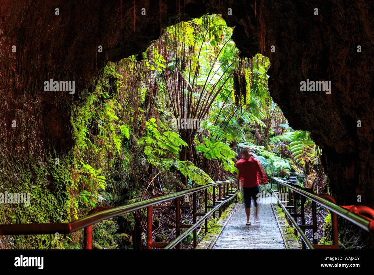 Thurston Lava Tube Trail, Hawaii Volcanoes National Park, Big Island, Hawaii Stock Photo