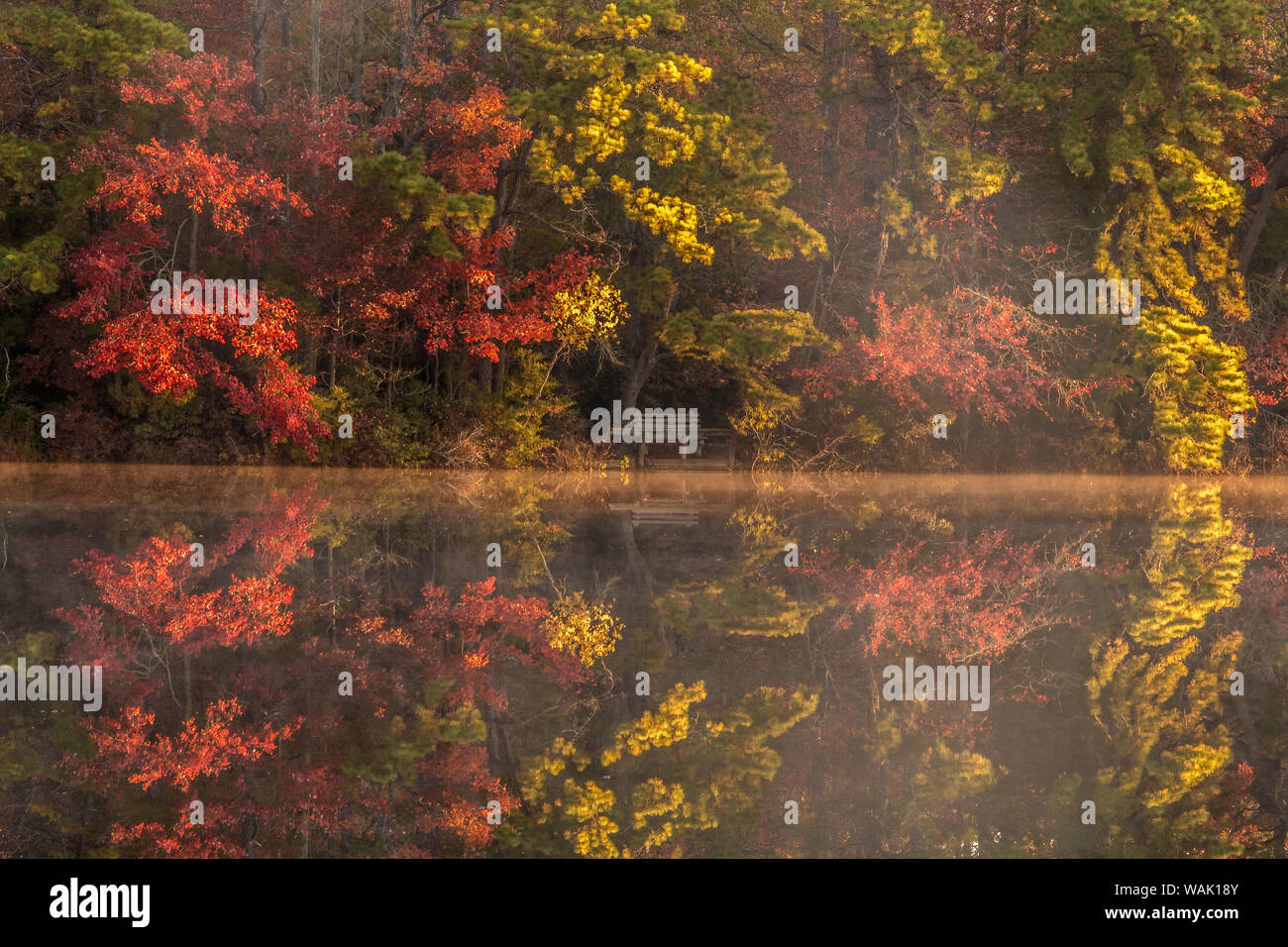 Usa New Jersey Belleplain State Forest Autumn Tree Reflections On Lake Credit As Jay O Brien Jaynes Gallery Danitadelimont Com Stock Photo Alamy
