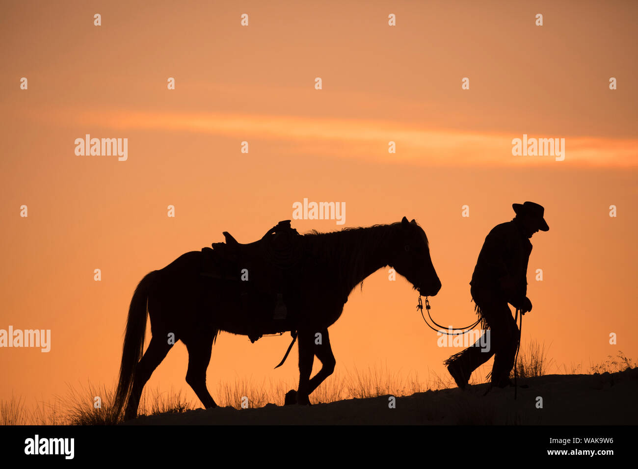 horse drive in winter on hideout ranch shell wyoming cowboy leading his horse at sunset and silhouetted mr WAK9W6
