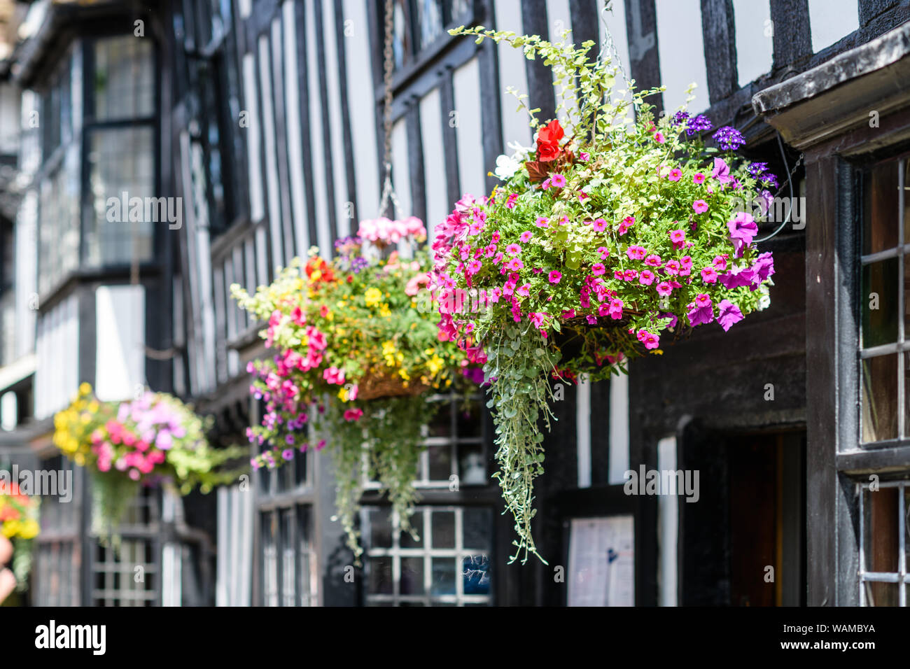 decorative baskets dried flowers small baskets country basket.htm flower baskets stock photos   flower baskets stock images alamy  flower baskets stock photos   flower