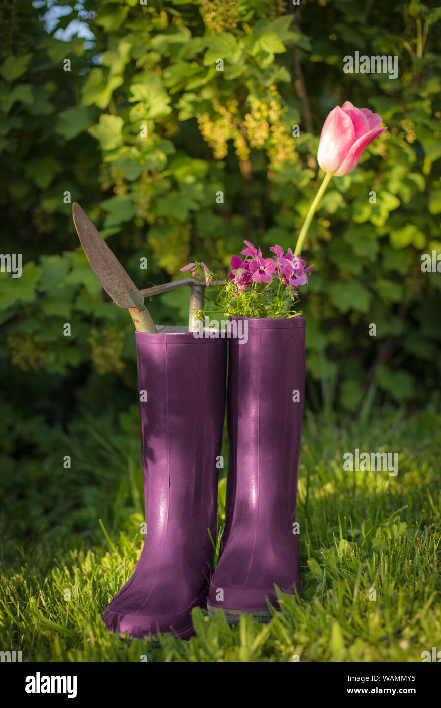 gardening with tools in rubber boots and green bush background Stock Photo