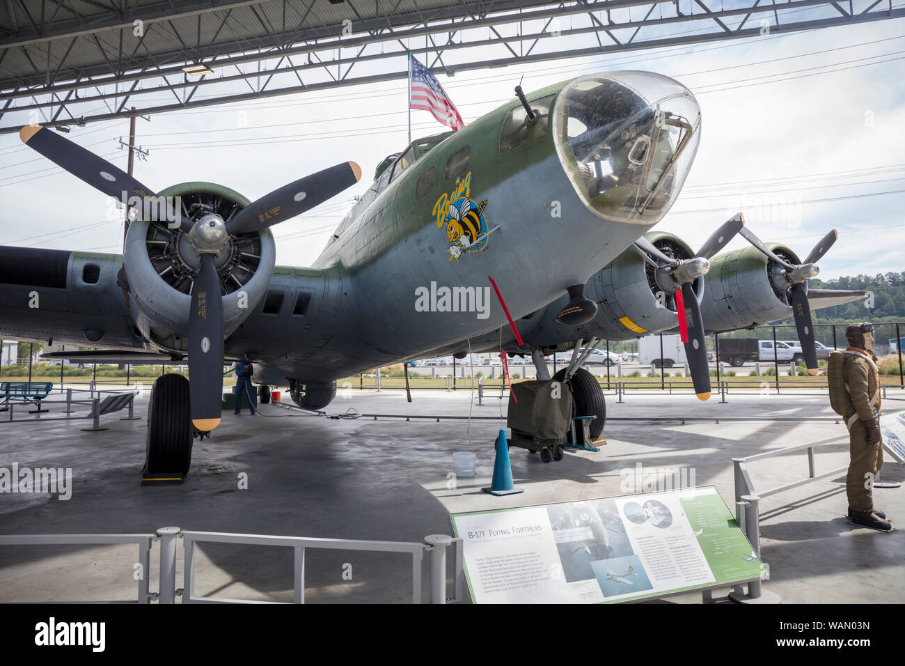 Boeing B-17 Flying Fortress is a four-engined heavy bomber, Boeing Museum of Flight, Boeing Field, Tukwila, Washington State, USA Stock Photo