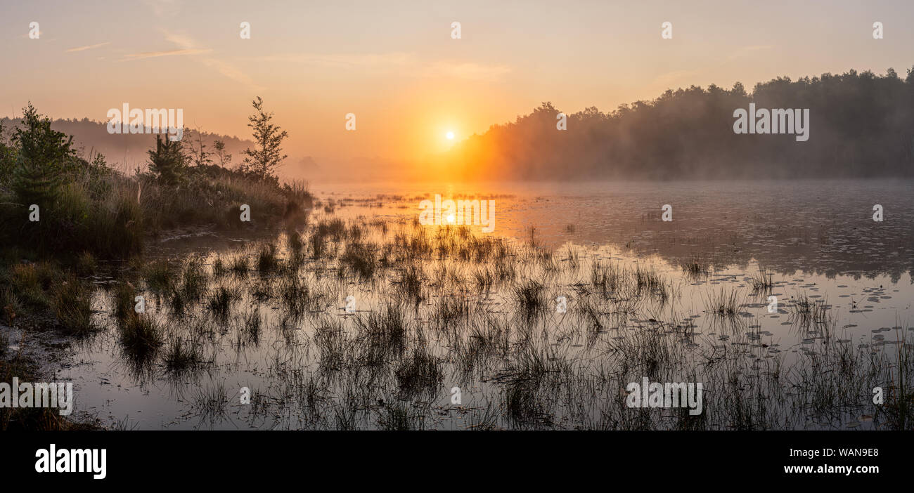 Sunrise over a pond in the grassland - Limburg, Belgium. In the summer the sun rises just between the trees in the background. A bit of fog completes Stock Photo
