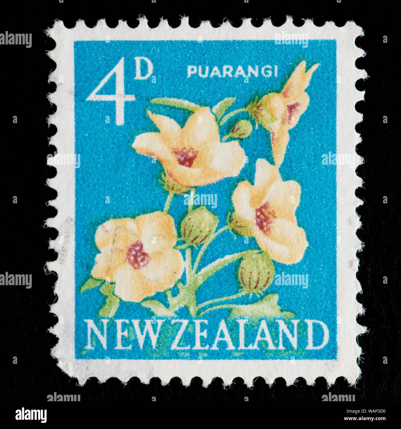 New Zealand Postage Stamp - Puarangi, Venice Mallow (Hibiscus trionum) Stock Photo