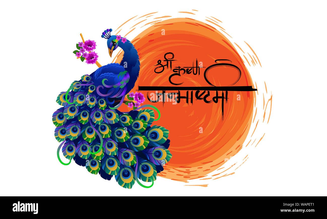 Lord Krishna Birthday Hindi Meaning Of Shri Krishna Janmashtami Vector Illustration Aesthetic Watercolor Peacock Flute Sketch Stroke Janmashtami Stock Photo Alamy
