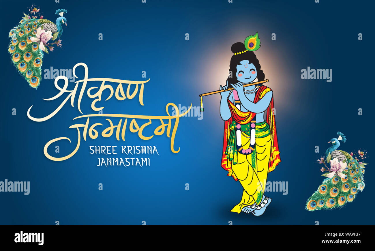 lord shri krishna playing flute with peacock illustration background for the festival of janmashtami hindi font calligraphy typographic bannerblue WAPF37