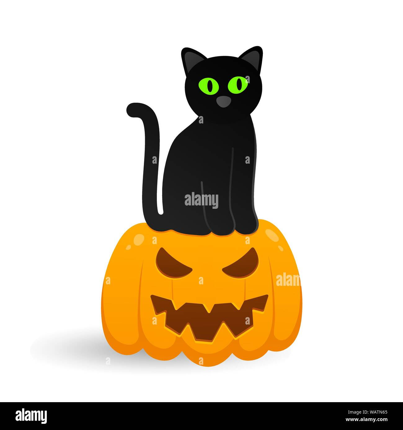 Cute Black With Cat Sitting On Halloween Pumpkin With Carved Scary
