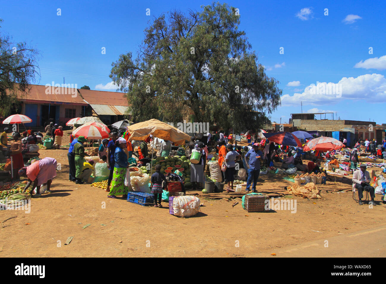 Fruit and vegetable market Kenya, East Africa. Local people buying and selling produce at side of road under sun parasols Stock Photo