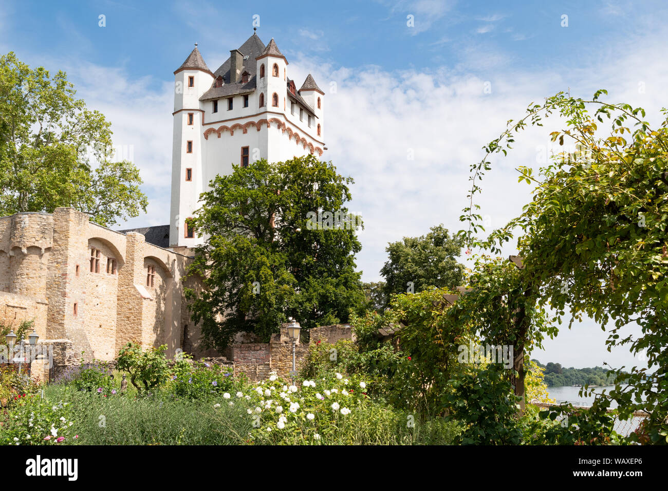 Eltville Electoral Castle, Eltville am Rhein, Germany Stock Photo