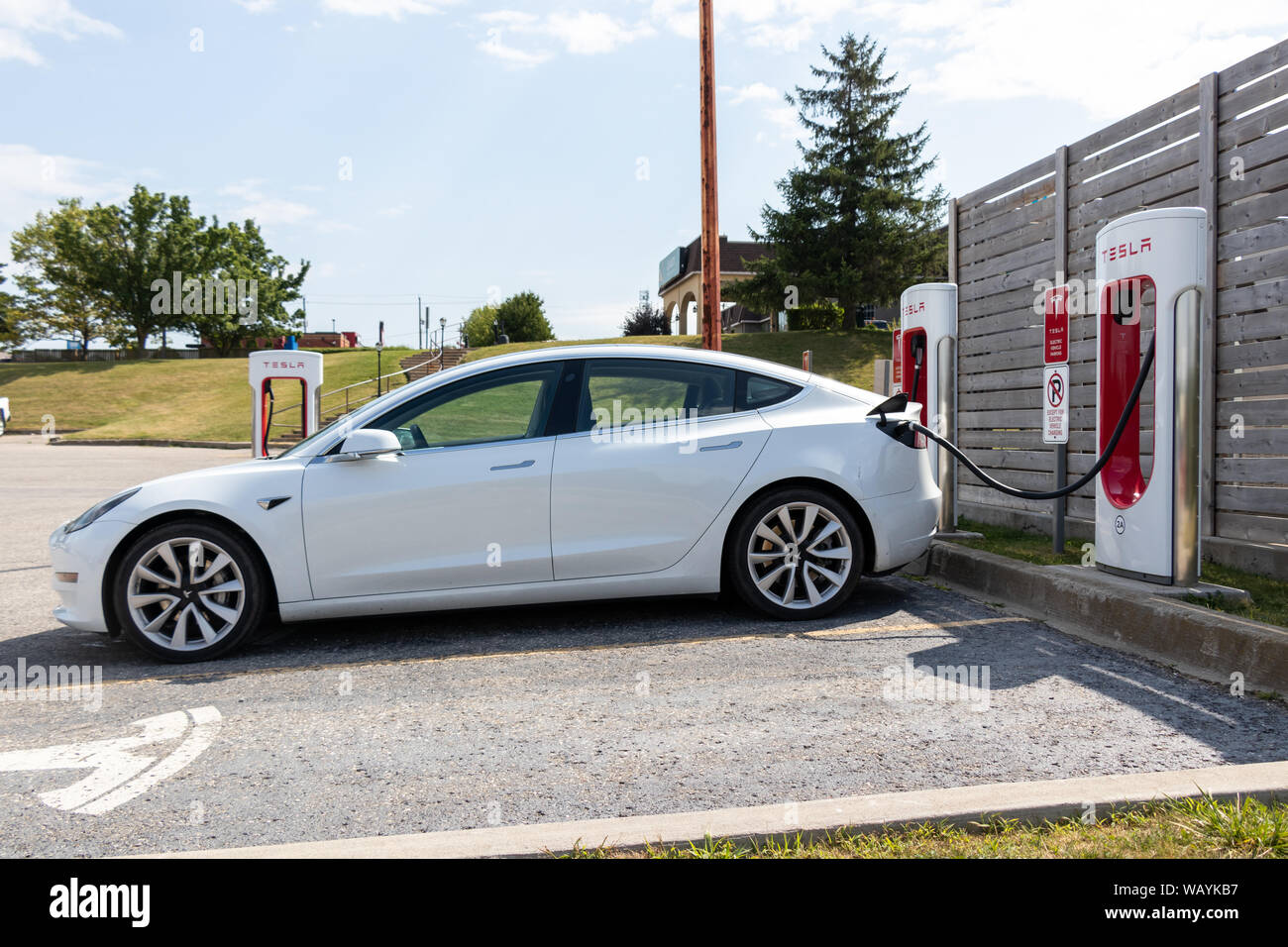 Full-view of white Tesla Model 3 parked and charging at