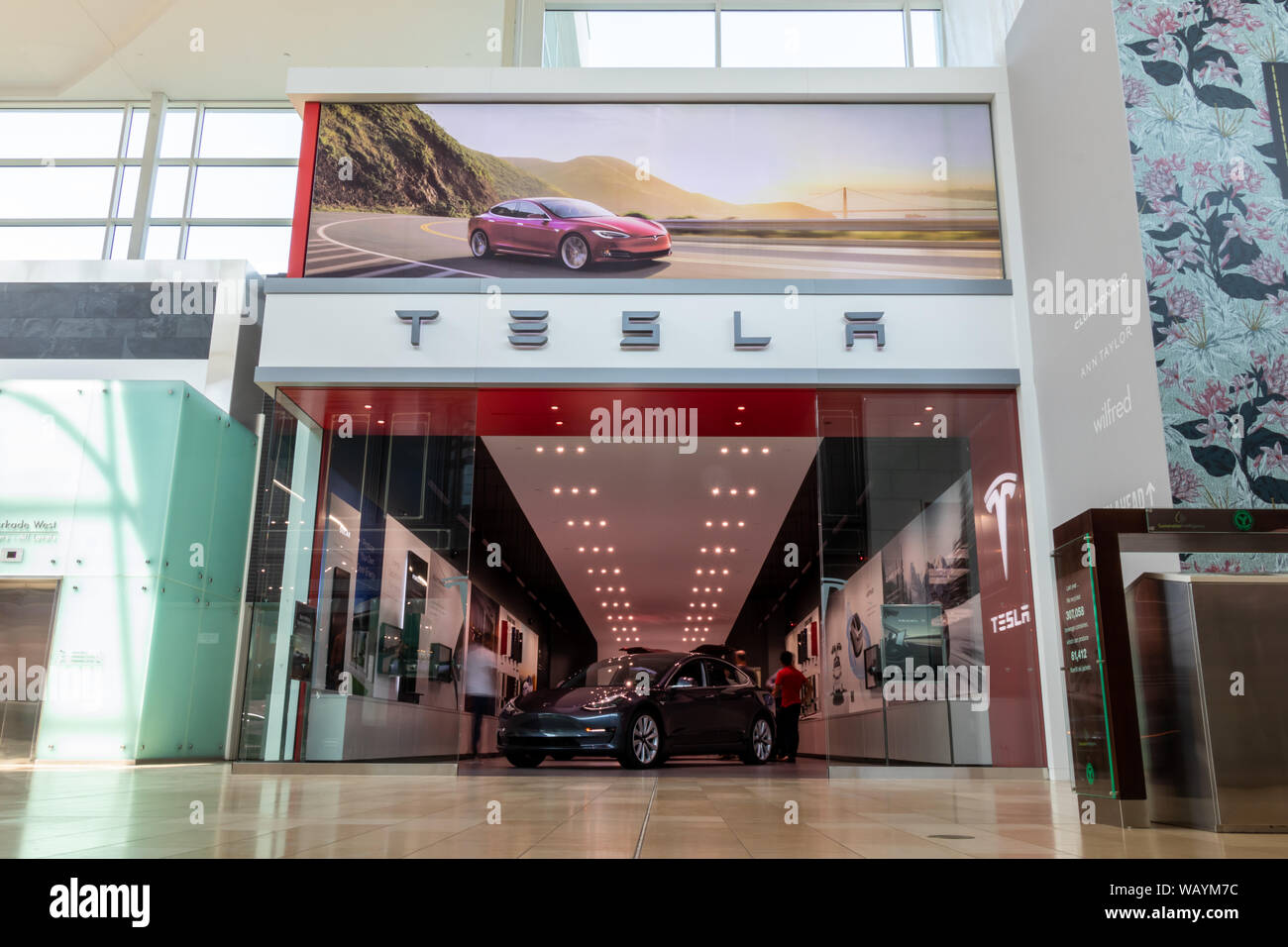 Front of Tesla Store with people mingling about inside with Tesla Model 3 upfront. Stock Photo