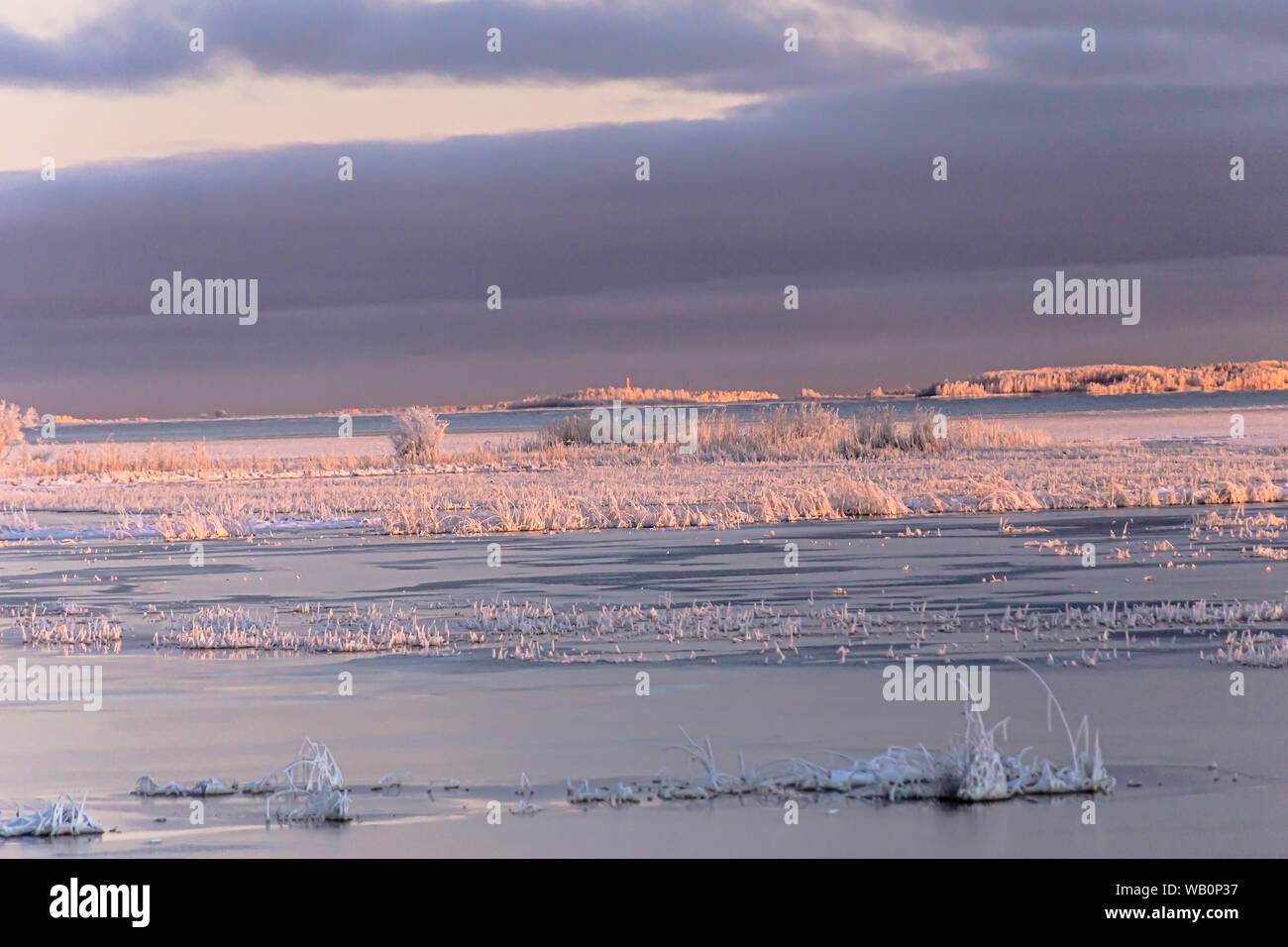 Winter time sea is frozen and frosty beach landscape,Hailuoto island,Bothnian Bay,North Ostrobothnia, Finland Stock Photo