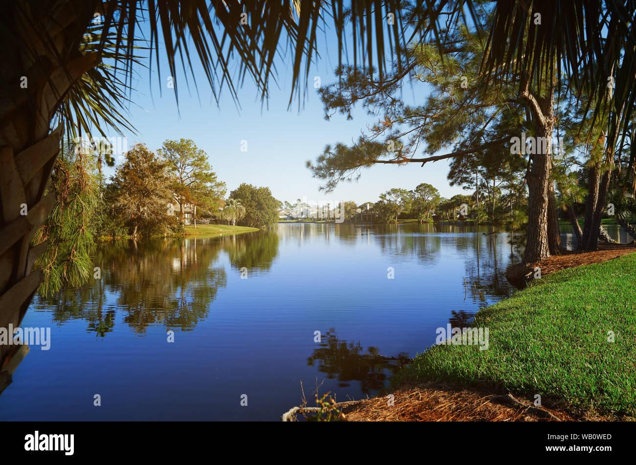 Small lake in Florida, USA Stock Photo