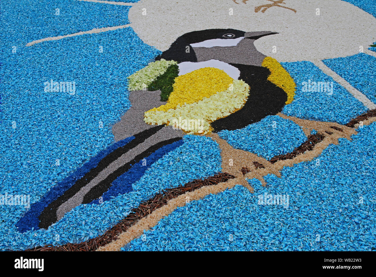flower petals, grains, rice, beans and seeds making a pattern of a jay on a road in the village of Castelraimondo in Italy to celebrate Corpus Christi Stock Photo