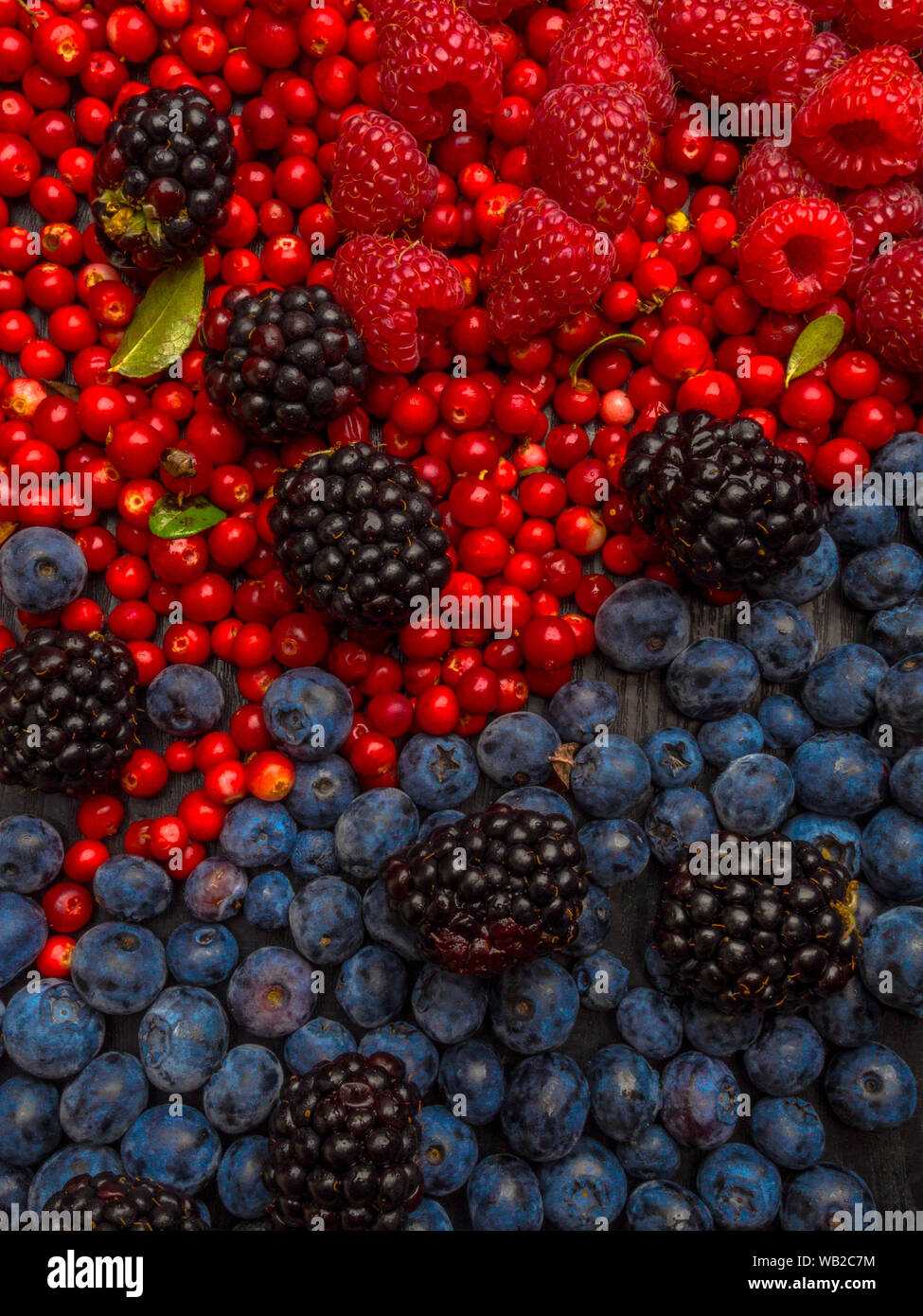 Super Antioxidants Superfood Mix Of Fresh Berries Rich With Resveratrol Vitamins Raw Food Ingredients Nutrition Background Nutrient Rich Foods Stock Photo Alamy