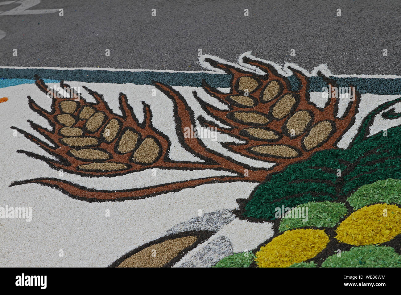 flower petals, grains, rice, beans and seeds making a pattern of ears of barley on a road in the village of Castelraimondo to celebrate Corpus Christi Stock Photo