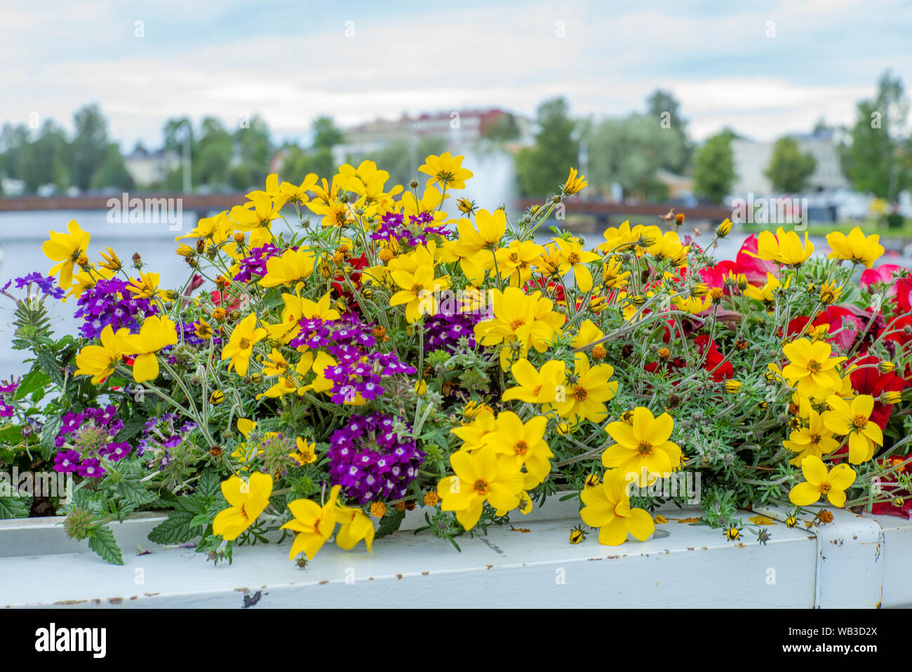 Colorful flowers on the bridge of Savonlinna in Finland with water jet in the background Stock Photo