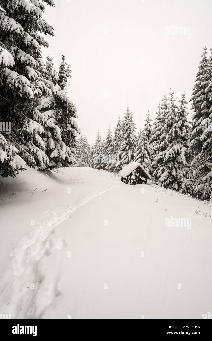 winter mountain scenery with wooden shelter, trees and trail covered by snow bellow Lysa hora hill in Moravskoslezske Beskydy mountains in Czech repub Stock Photo