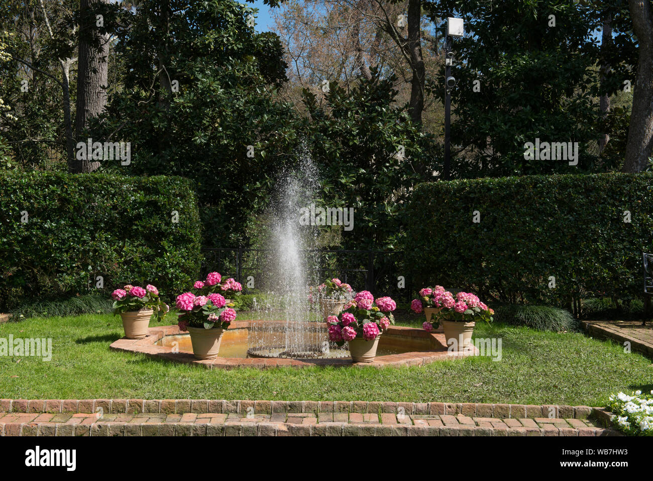 Flowers And A Small Fountain At The Bayou Bend Collection And
