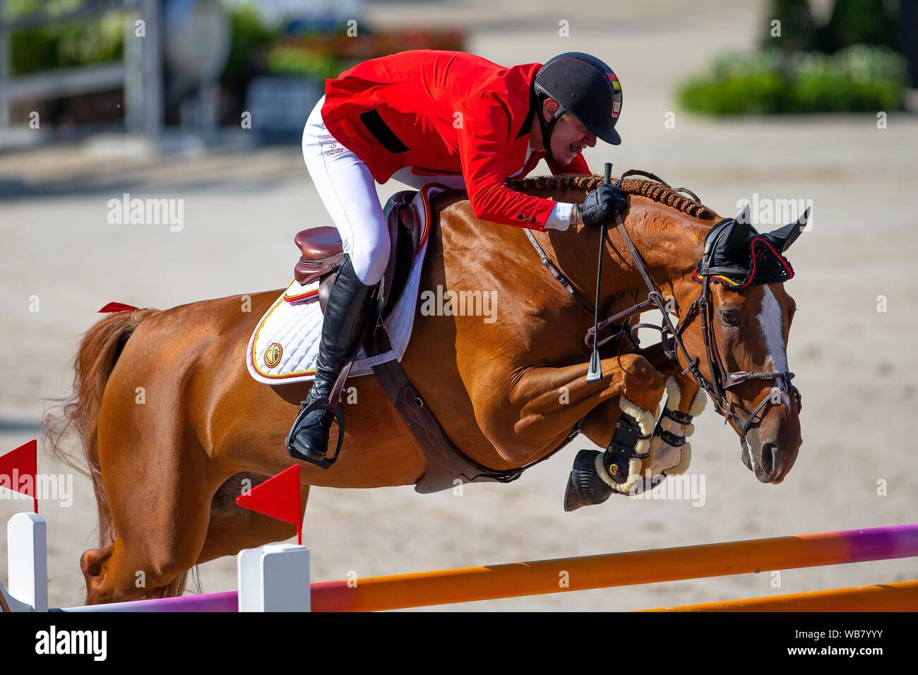 Rotterdam. Netherlands. 23 August 2019. Team Gold Medal. Jos Verlooy (BEL)  riding Igor in the Team Final. Showjumping. Longines FEI European  Championships. Credit Elli Birch/SIP photo agency/Alamy live news Stock  Photo -