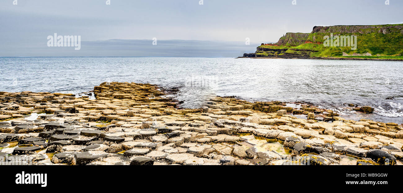 Giant's Causeway,  Northern Ireland, UK. Panorama of unique hexagonal and pentagonal geological formations of volcanic basalt rocks, covered by barnac Stock Photo