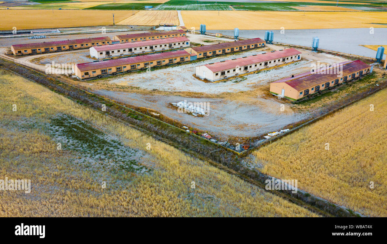 Aerial View Of Pig Farm Buildings In Countryside Agriculture In