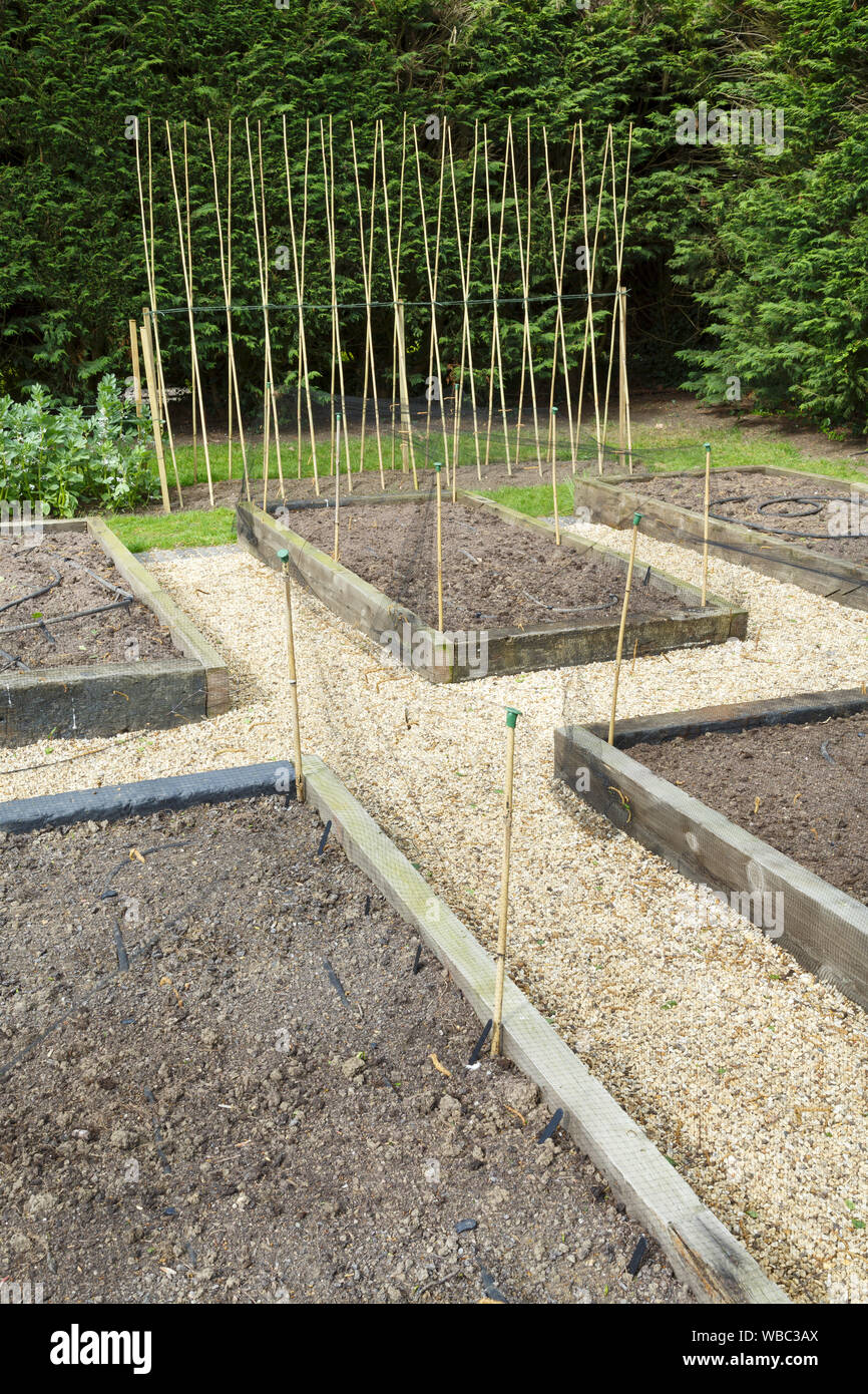Planning And Preparing A Vegetable Garden With Raised Beds Stock