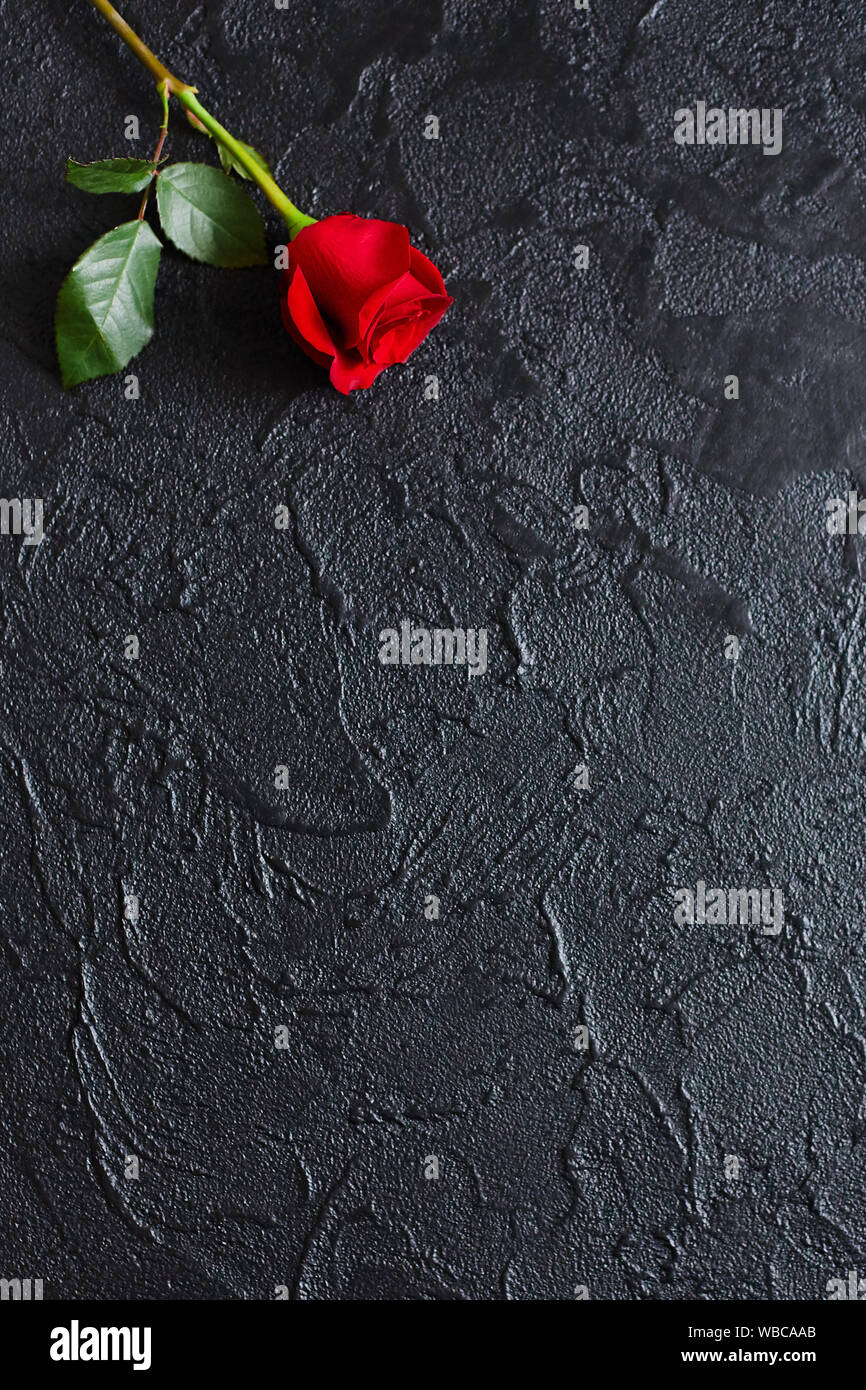 Condolence From Stock Photos Condolence From Stock Images