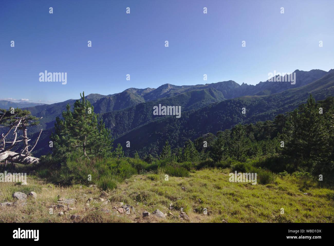 Punta dell'Oriente and Monte Renoso from GR20 near Bergeries de Cardo, France, Corsica, GR20 Stock Photo