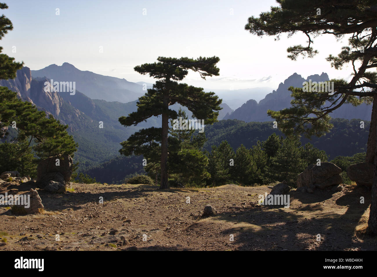 View from Col de Bavella, France, Corsica, GR20 Stock Photo