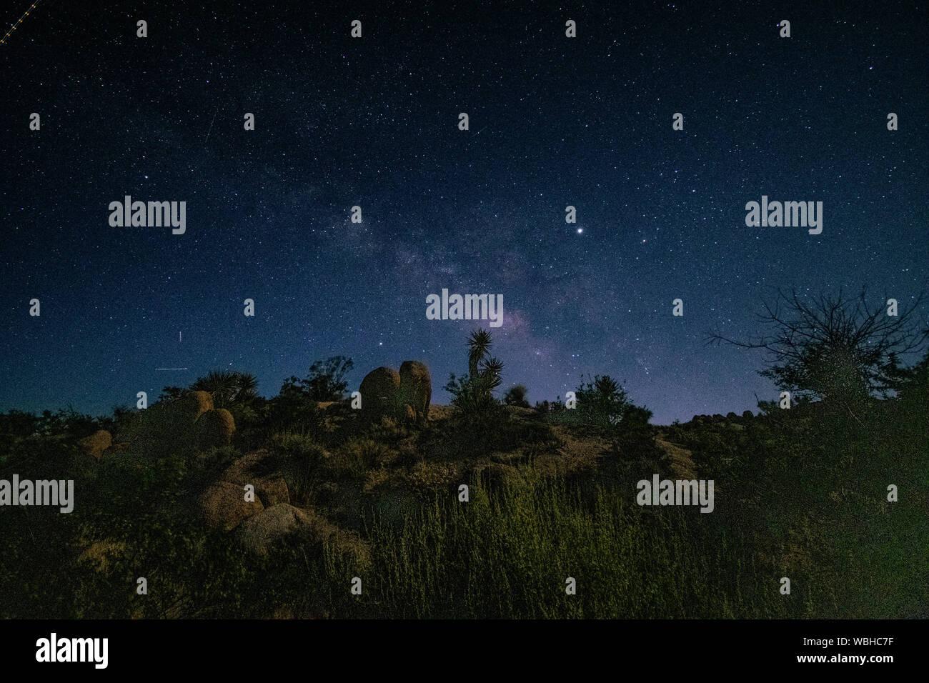 Night Sky At Joshua Tree National Park California Stock