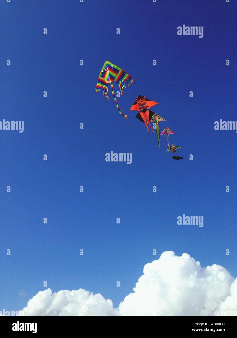 Multi Colored Kites Flying Against Blue Sky Stock Photo