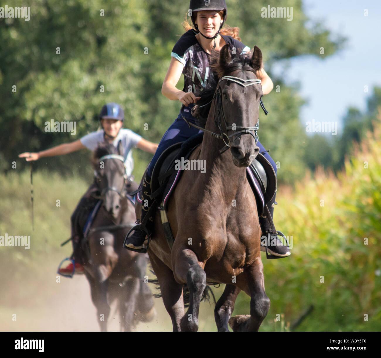 Friends Riding Horses At Park Stock Photo Alamy